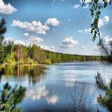 VI  районная экологическая научно-практическая конференция  «Экология родного края».