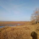 До Байкала километров 15 от устья, которое представляет из себя болотину и кучу маленьких островков. Через раз стоят хатки бобров