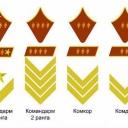 Знаки различия высшего командного состава Красной армии (РККА) до 1943 года